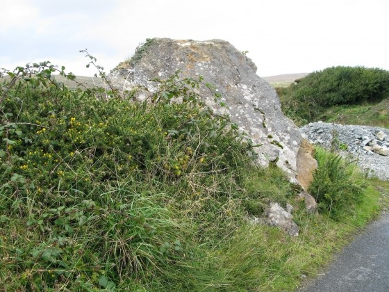 large stone in ditch overgrown green